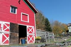 Barn View 2
