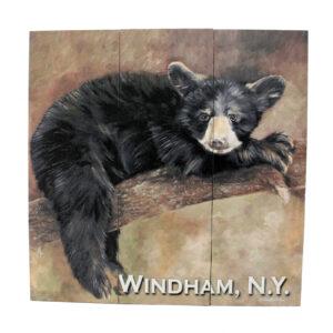 Bear Sign, Brown